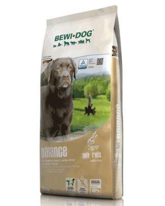 Bewi dog Balance
